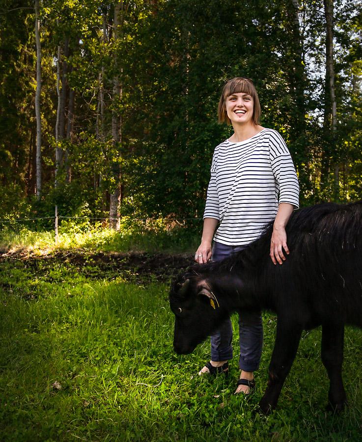 Ängsholmens Gårdsmejeri  – Vattenbufflar i Sverige