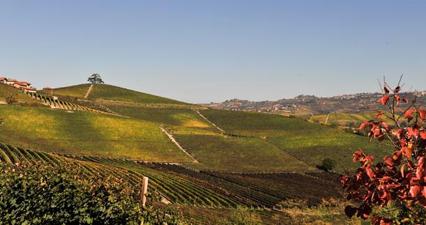 Piemonte på hösten…