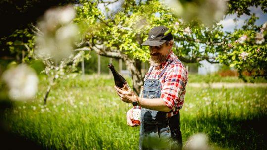 Johan på Pomologik i äppelträdgården